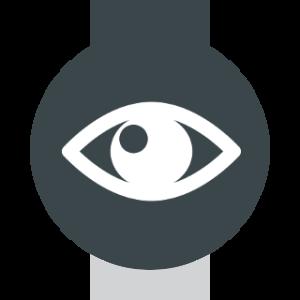 perception-icon